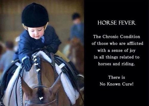 horse-fever
